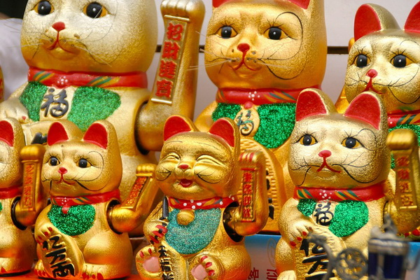 Take a look at these adorable Japanese waving cats