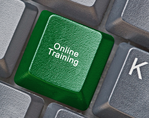 Online Training Programs versus Traditional Courses