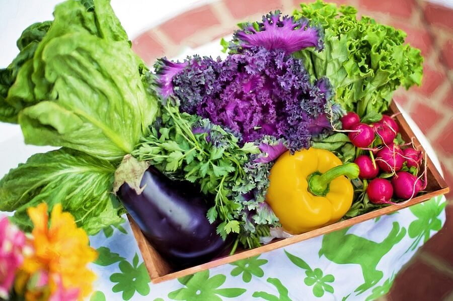 assorted vegetables online nutrition courses