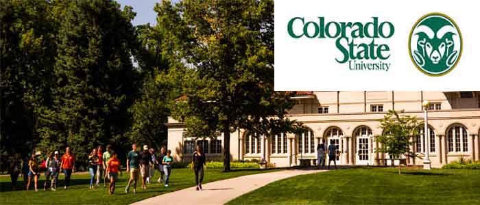 Colorado State University-canvas